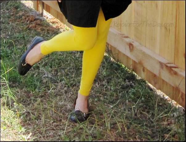 YellowLegs2