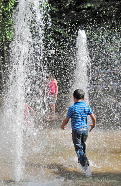 fountains at the zoo