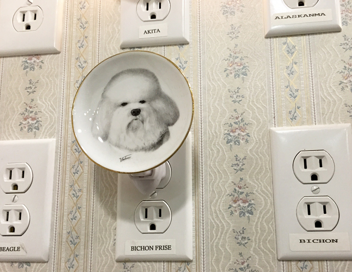 Grumpy Bichon nightlight, anyone?