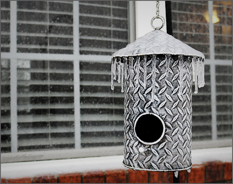 icy birdhouse