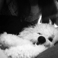 Home... Yuki's favorite place for us to be.