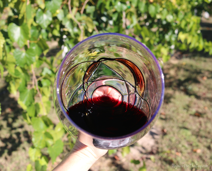 wine glass details