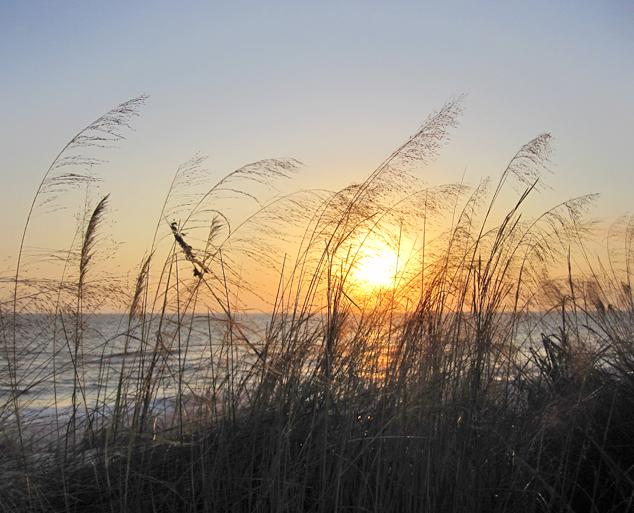 beachside sunset