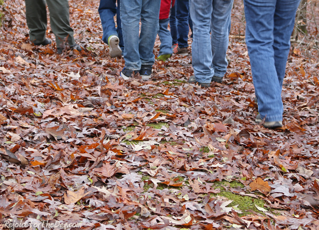 Walking on leaves