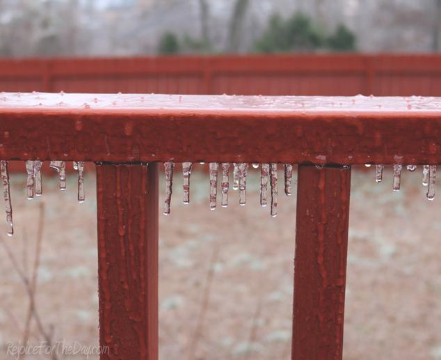 Winter in TN3