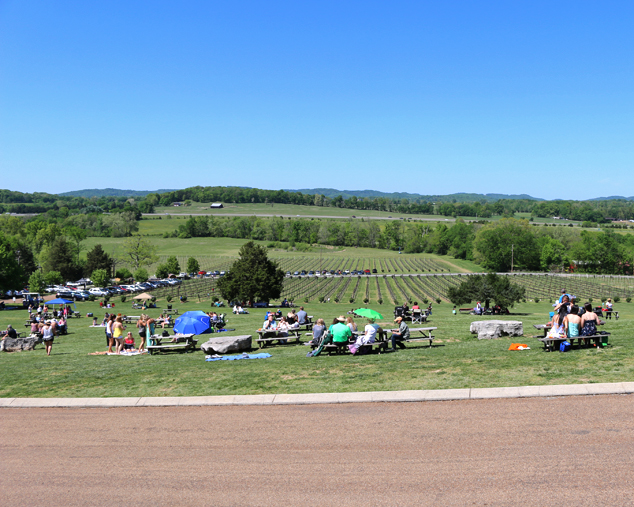Arrington Vineyards on a Sunday 2