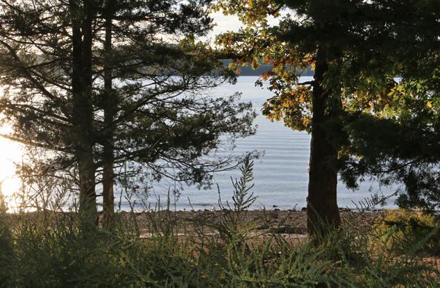 table-rock-lake-walk