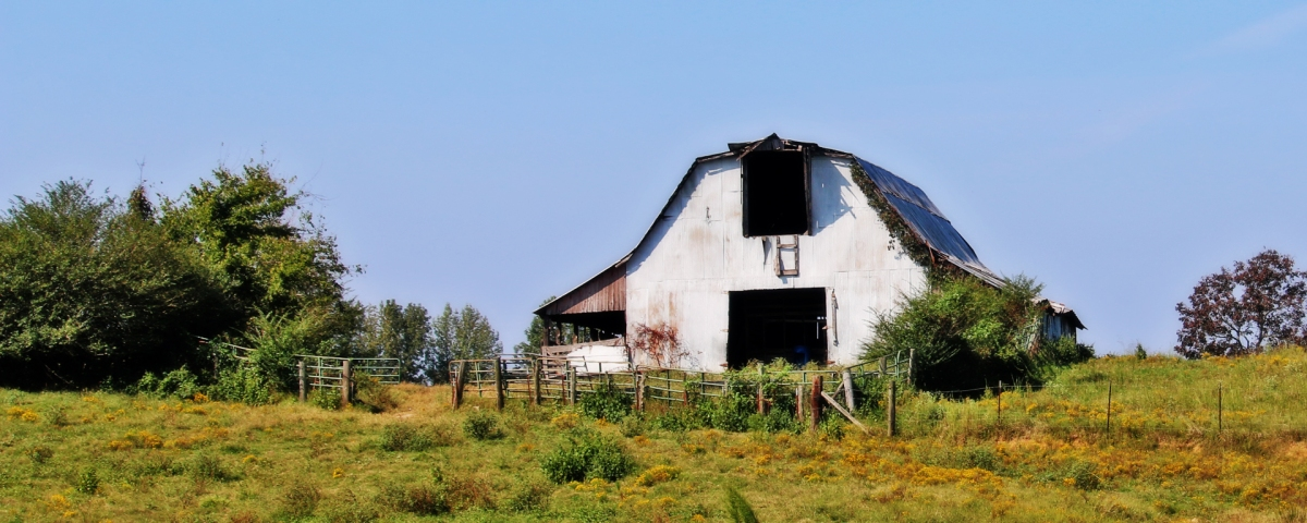 A Barn in Four Seasons