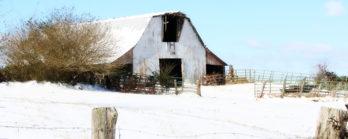 Destination: A Barn in Winter