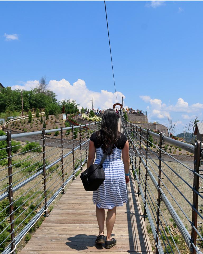 Walking on the SkyBridge