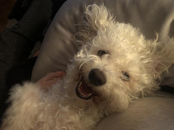 Smiling Yuki